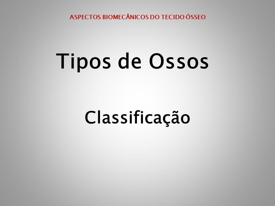ASPECTOS BIOMECÂNICOS DO TECIDO ÓSSEO Tipos de Ossos Classificação