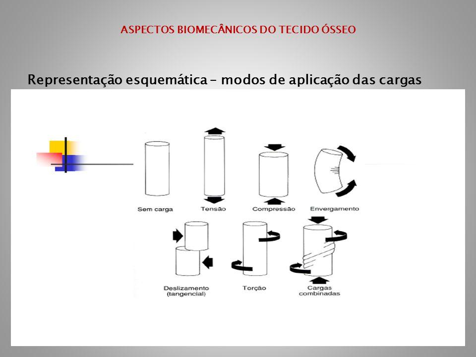 ASPECTOS BIOMECÂNICOS DO TECIDO ÓSSEO Representação esquemática – modos de aplicação das cargas