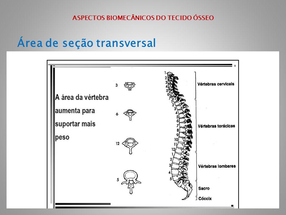 ASPECTOS BIOMECÂNICOS DO TECIDO ÓSSEO Área de seção transversal