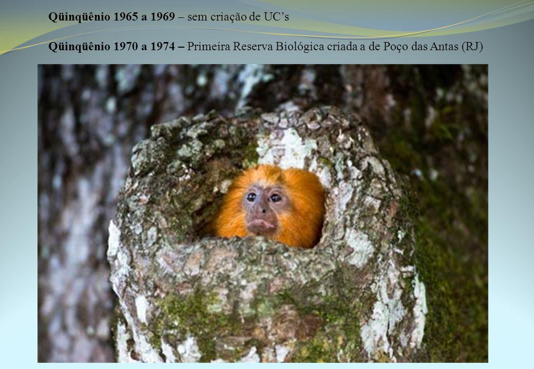 Qüinqüênio 1965 a 1969 – sem criação de UC's Qüinqüênio 1970 a 1974 – Primeira Reserva Biológica criada a de Poço das Antas (RJ)
