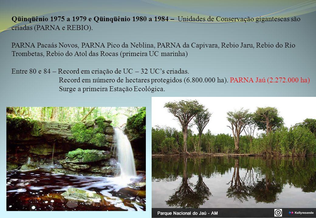 Qüinqüênio 1975 a 1979 e Qüinqüênio 1980 a 1984 – Unidades de Conservação gigantescas são criadas (PARNA e REBIO). PARNA Pacaás Novos, PARNA Pico da N