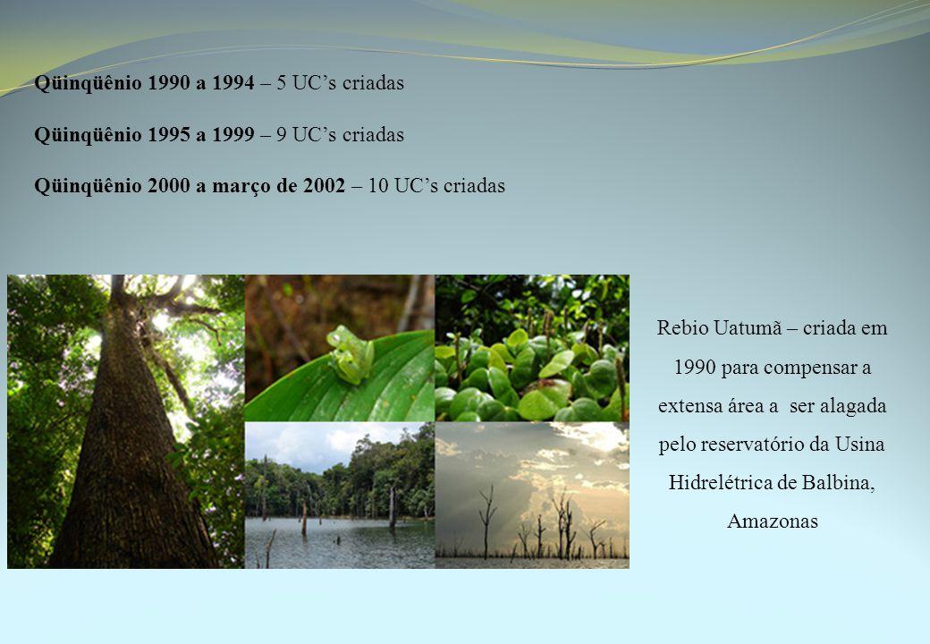 Qüinqüênio 1990 a 1994 – 5 UC's criadas Qüinqüênio 1995 a 1999 – 9 UC's criadas Qüinqüênio 2000 a março de 2002 – 10 UC's criadas Rebio Uatumã – criada em 1990 para compensar a extensa área a ser alagada pelo reservatório da Usina Hidrelétrica de Balbina, Amazonas