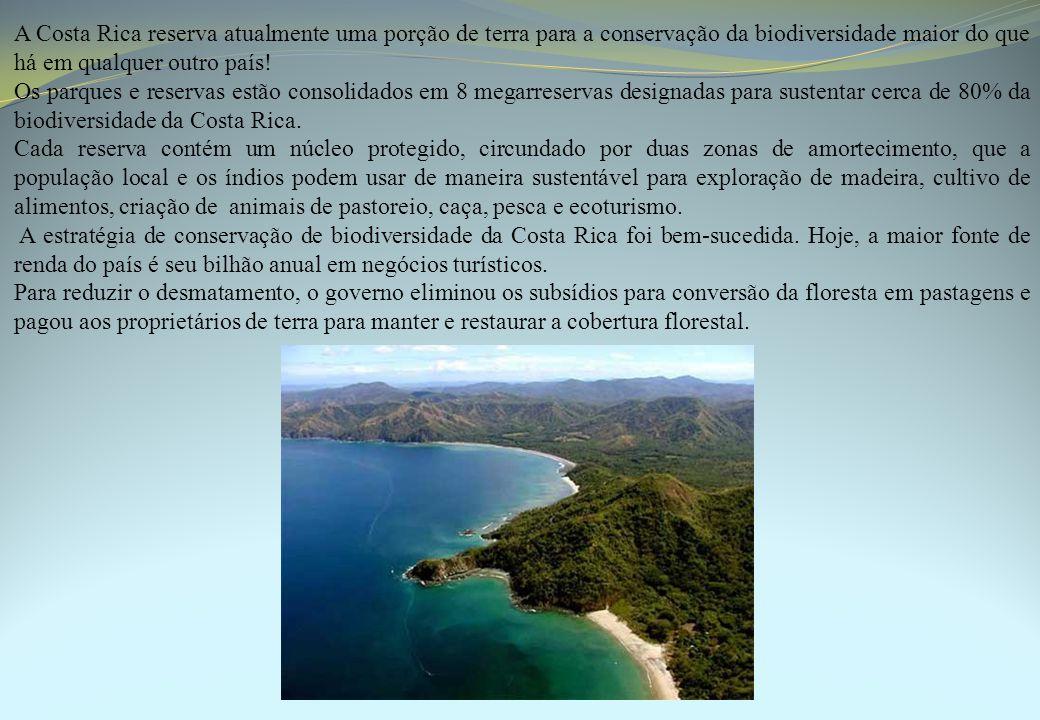 A Costa Rica reserva atualmente uma porção de terra para a conservação da biodiversidade maior do que há em qualquer outro país! Os parques e reservas