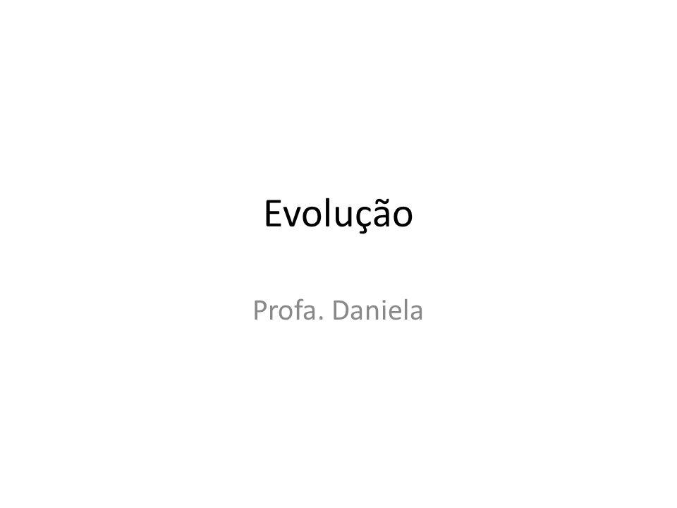 Evolução Profa. Daniela