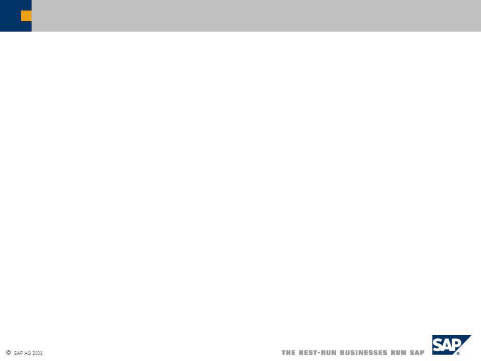  SAP AG 2003