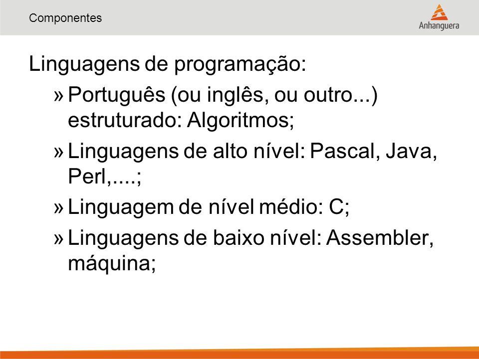 Componentes Linguagens de programação: »Português (ou inglês, ou outro...) estruturado: Algoritmos; »Linguagens de alto nível: Pascal, Java, Perl,....; »Linguagem de nível médio: C; »Linguagens de baixo nível: Assembler, máquina;