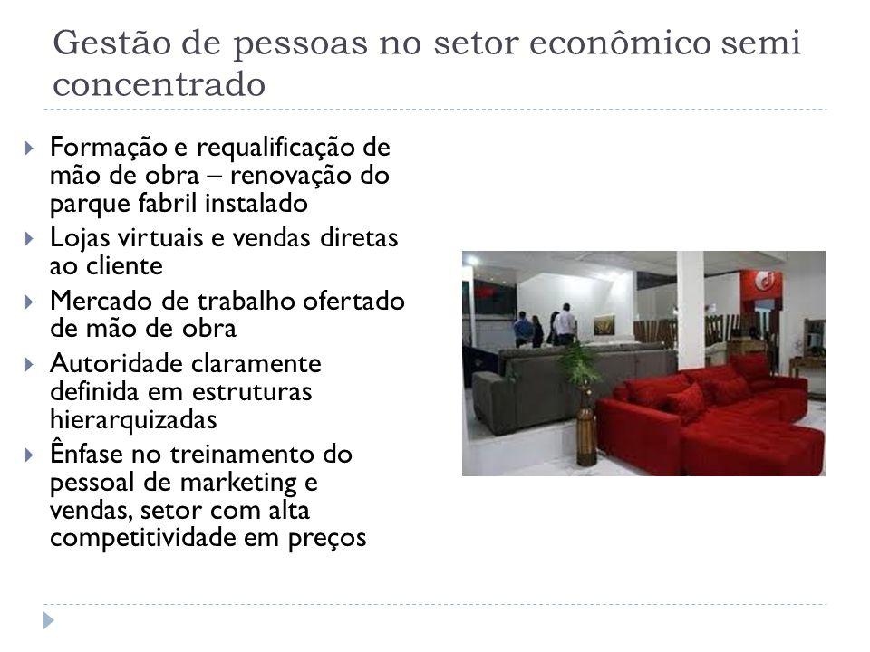 Gestão de pessoas no setor econômico semi concentrado  Formação e requalificação de mão de obra – renovação do parque fabril instalado  Lojas virtua