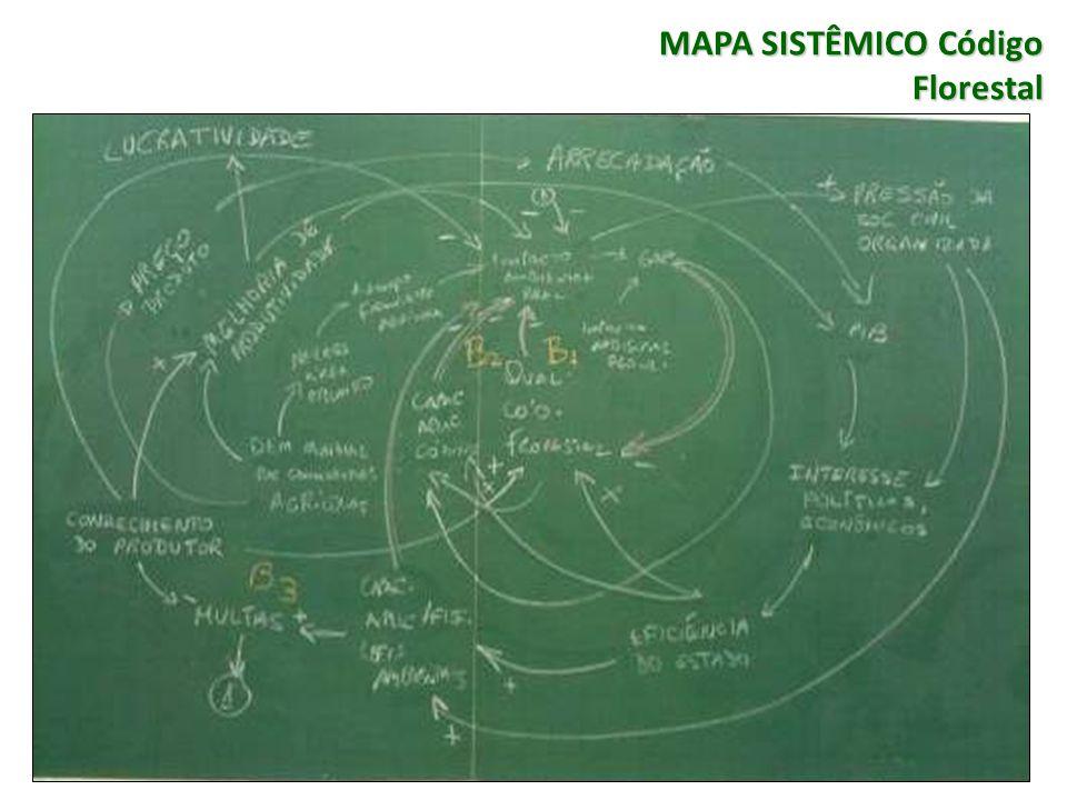 MAPA SISTÊMICO Código Florestal