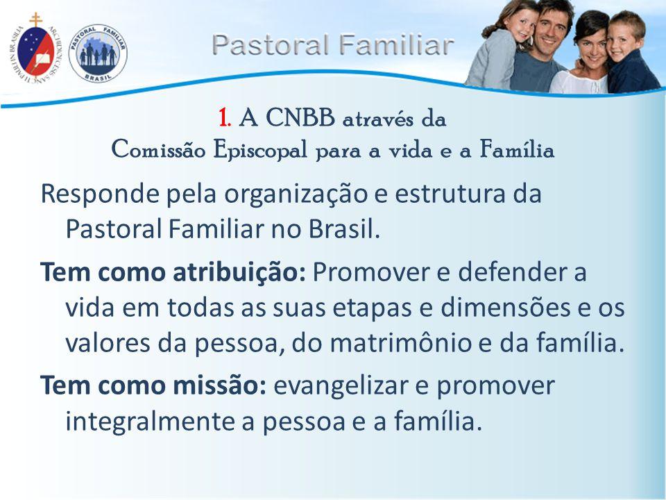 1. A CNBB através da Comissão Episcopal para a vida e a Família Responde pela organização e estrutura da Pastoral Familiar no Brasil. Tem como atribui