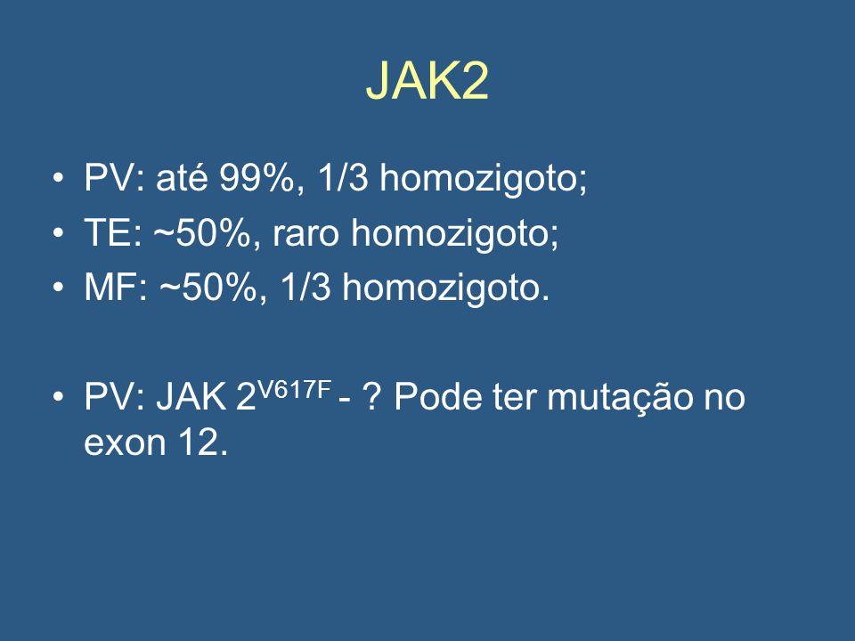 JAK2 PV: até 99%, 1/3 homozigoto; TE: ~50%, raro homozigoto; MF: ~50%, 1/3 homozigoto.