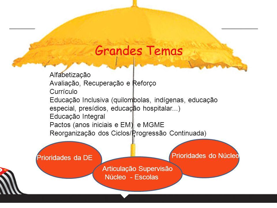 Grandes Temas Alfabetização Avaliação, Recuperação e Reforço Currículo Educação Inclusiva (quilombolas, indígenas, educação especial, presídios, educa