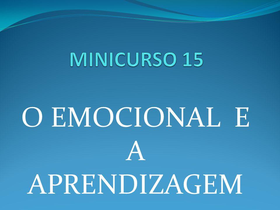 O EMOCIONAL E A APRENDIZAGEM