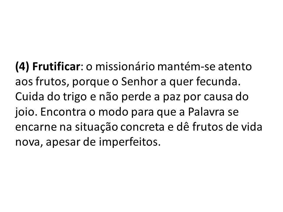 (4) Frutificar: o missionário mantém-se atento aos frutos, porque o Senhor a quer fecunda.