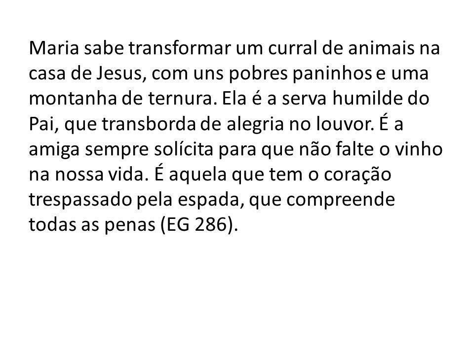 Maria sabe transformar um curral de animais na casa de Jesus, com uns pobres paninhos e uma montanha de ternura.