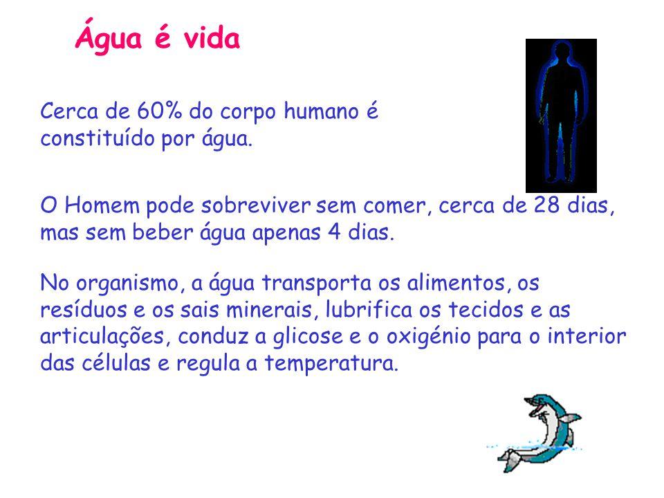 Água é vida Cerca de 60% do corpo humano é constituído por água. O Homem pode sobreviver sem comer, cerca de 28 dias, mas sem beber água apenas 4 dias