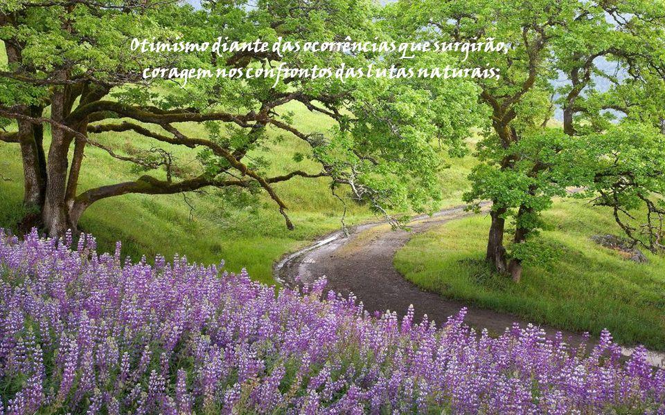 Mantém, portanto atitude positiva em relação aos acontecimentos que devem ser enfrentados;