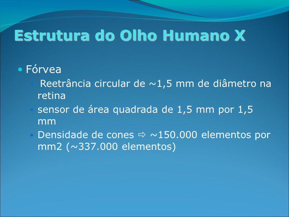 Estrutura do Olho Humano X Fórvea Reetrância circular de ~1,5 mm de diâmetro na retina sensor de área quadrada de 1,5 mm por 1,5 mm Densidade de cones  ~150.000 elementos por mm2 (~337.000 elementos)