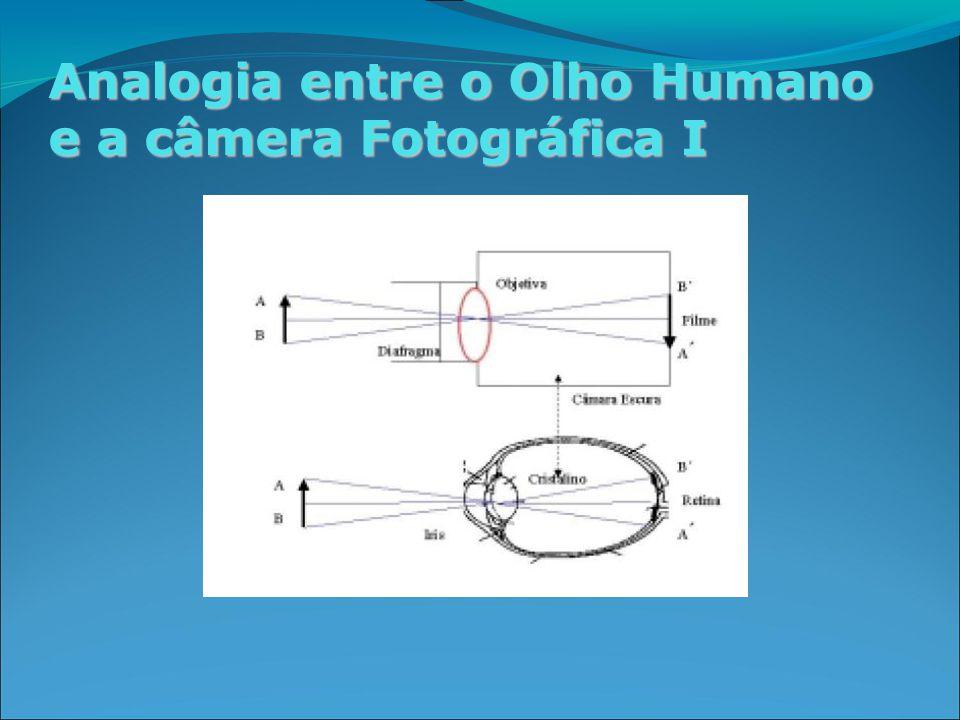 Analogia entre o Olho Humano e a câmera Fotográfica I