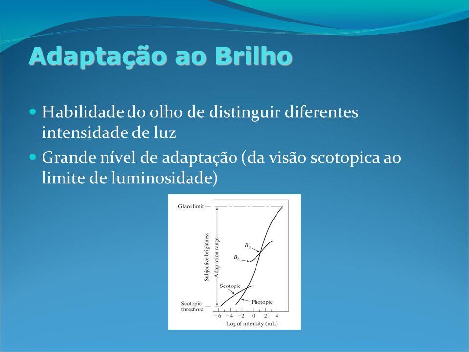 Adaptação ao Brilho Habilidade do olho de distinguir diferentes intensidade de luz Grande nível de adaptação (da visão scotopica ao limite de luminosidade)