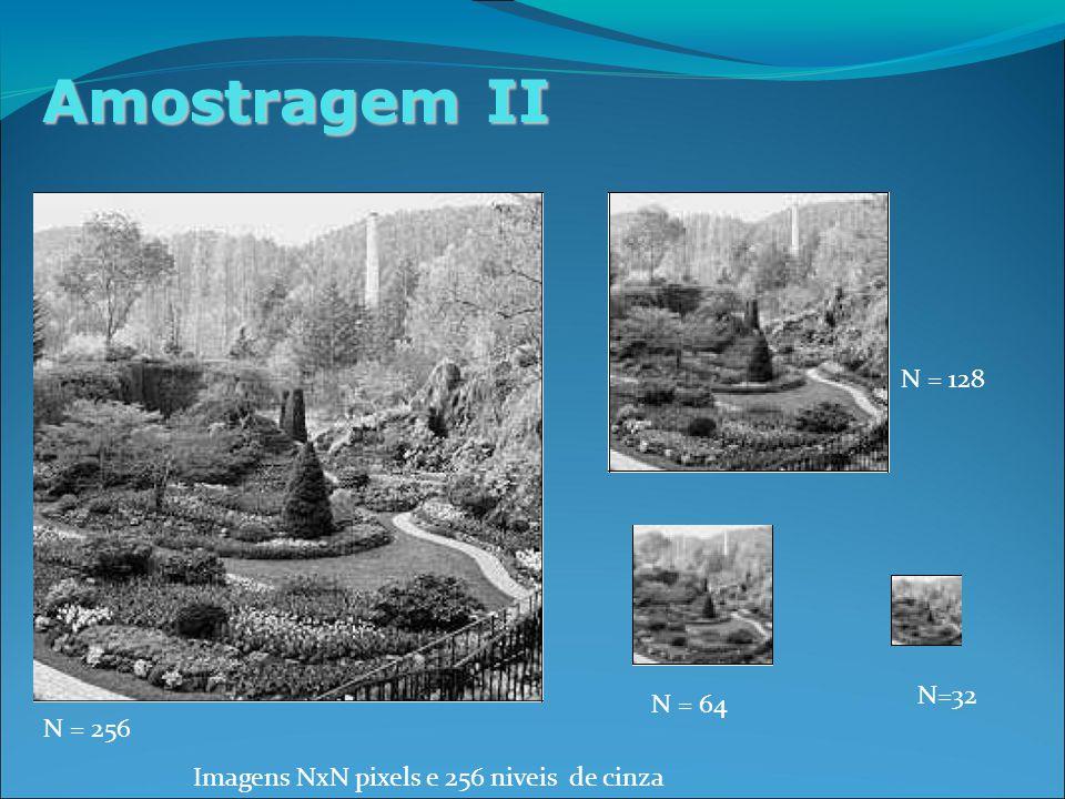 Amostragem II N = 256 Imagens NxN pixels e 256 niveis de cinza N = 128 N = 64 N=32