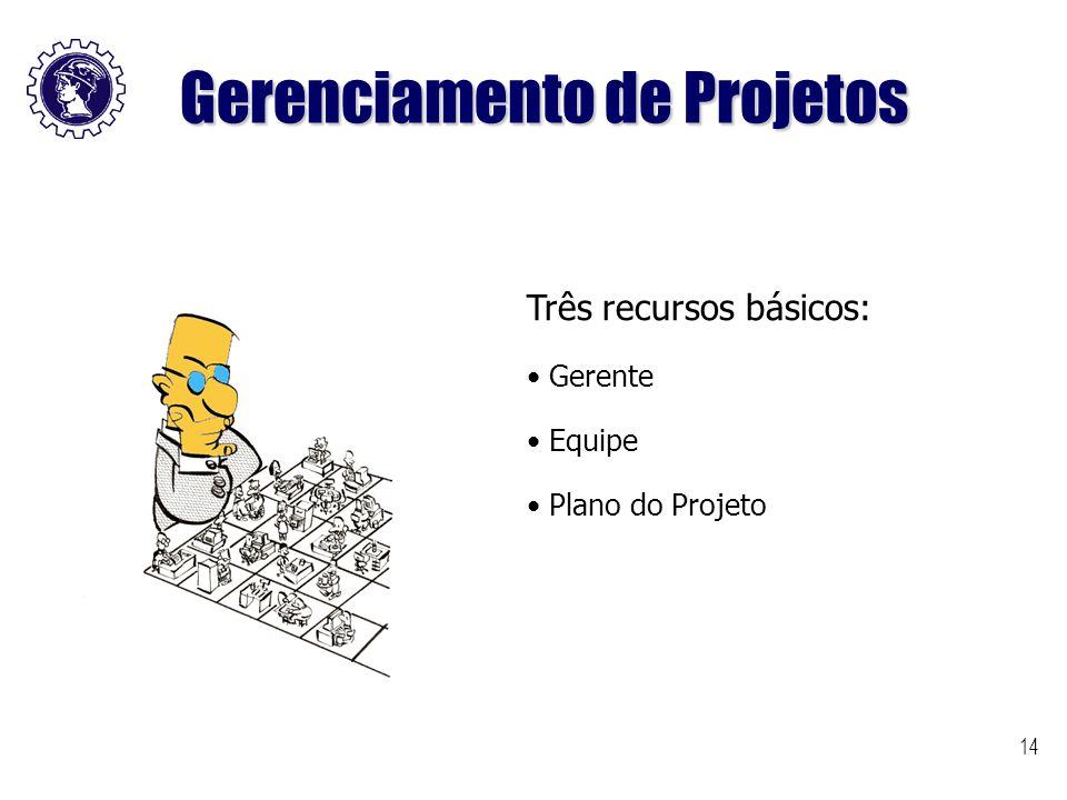 14 Três recursos básicos: Gerente Equipe Plano do Projeto Gerenciamento de Projetos