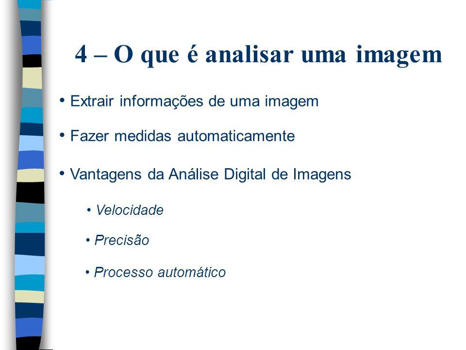 4 – O que é analisar uma imagem Extrair informações de uma imagem Fazer medidas automaticamente Vantagens da Análise Digital de Imagens Velocidade Precisão Processo automático