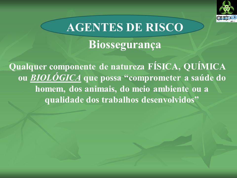 Qualquer componente de natureza FÍSICA, QUÍMICA ou BIOLÓGICA que possa comprometer a saúde do homem, dos animais, do meio ambiente ou a qualidade dos trabalhos desenvolvidos AGENTES DE RISCO Biossegurança