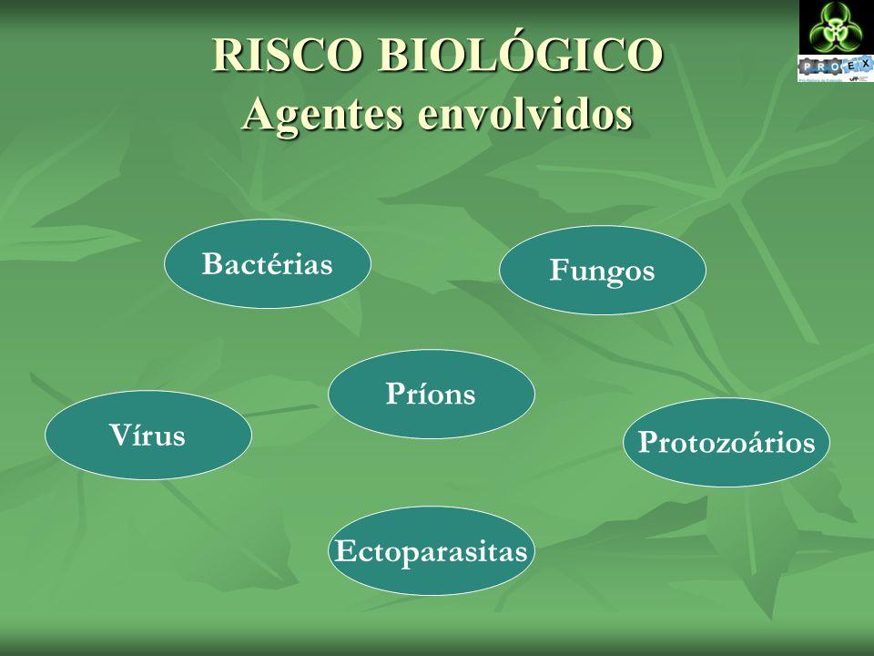 RISCO BIOLÓGICO Agentes envolvidos Bactérias Vírus Fungos Ectoparasitas Protozoários Príons