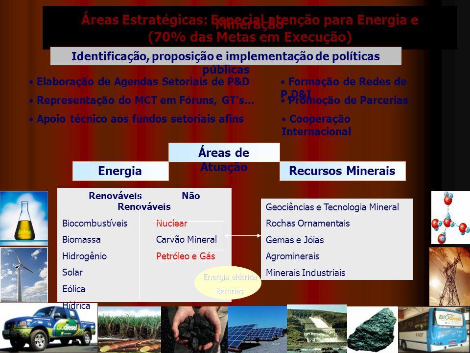 Áreas Estratégicas: Especial atenção para Energia e Mineração (70% das Metas em Execução) Identificação, proposição e implementação de políticas públicas Elaboração de Agendas Setoriais de P&D Apoio técnico aos fundos setoriais afins Representação do MCT em Fóruns, GT's...