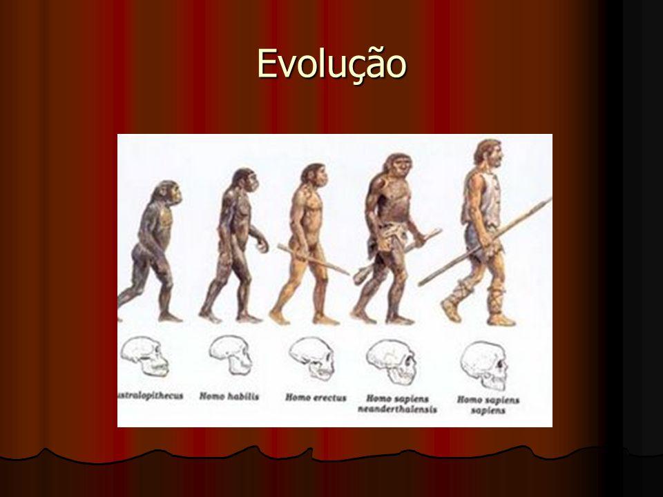Caminhos do Homo Sapiens Sapiens