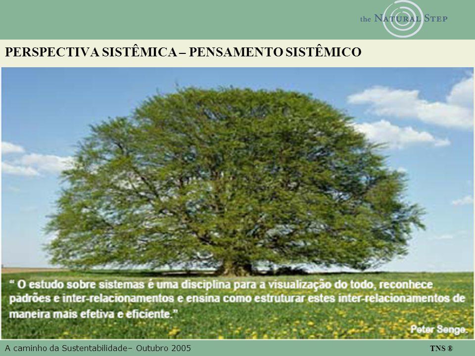 A caminho da Sustentabilidade– Outubro 2005 TNS ® PERSPECTIVA SISTÊMICA – PENSAMENTO SISTÊMICO