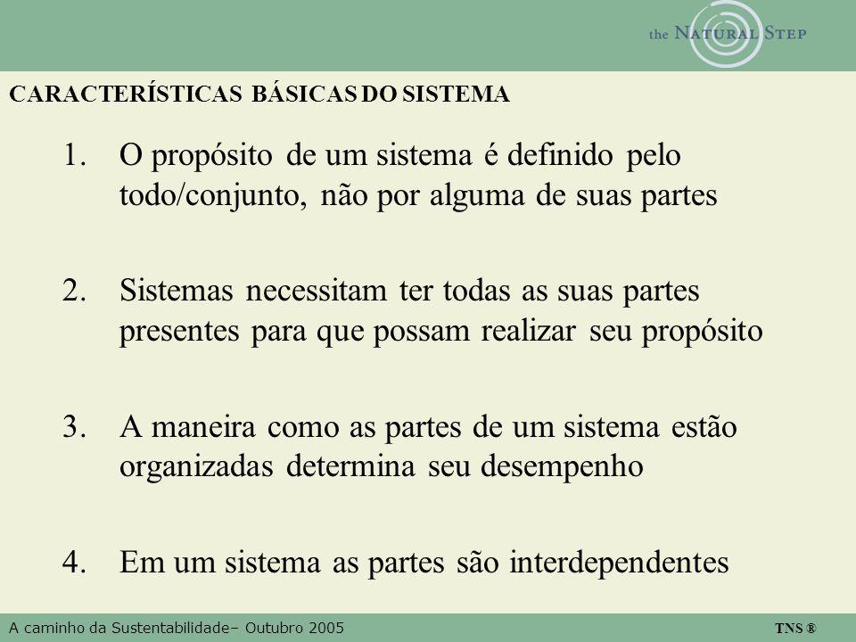 A caminho da Sustentabilidade– Outubro 2005 TNS ® CARACTERÍSTICAS BÁSICAS DO SISTEMA 1.O propósito de um sistema é definido pelo todo/conjunto, não por alguma de suas partes 2.