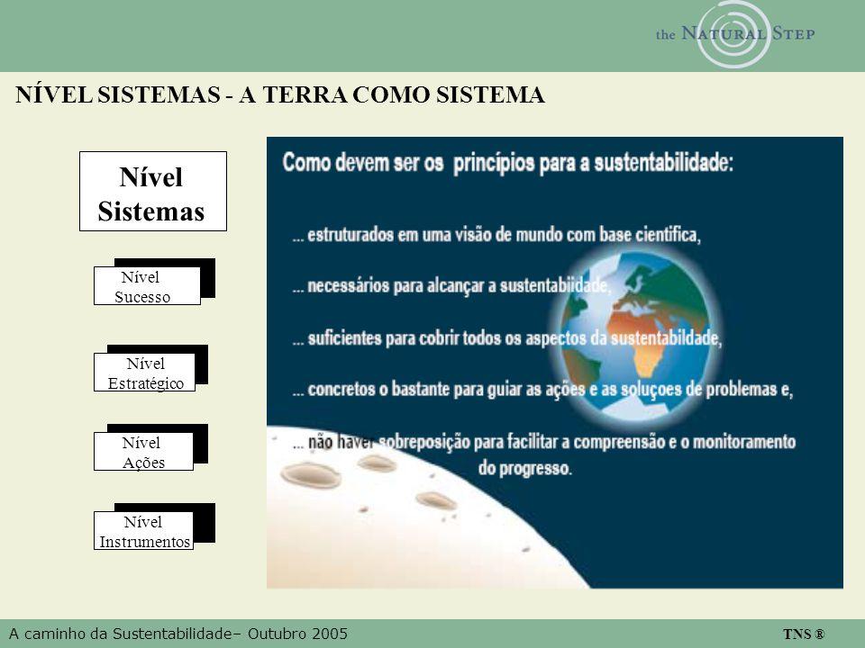 A caminho da Sustentabilidade– Outubro 2005 TNS ® NÍVEL SISTEMAS - A TERRA COMO SISTEMA Nível Sistemas Nível Sucesso Nível Estratégico Nível Ações Nível Instrumentos