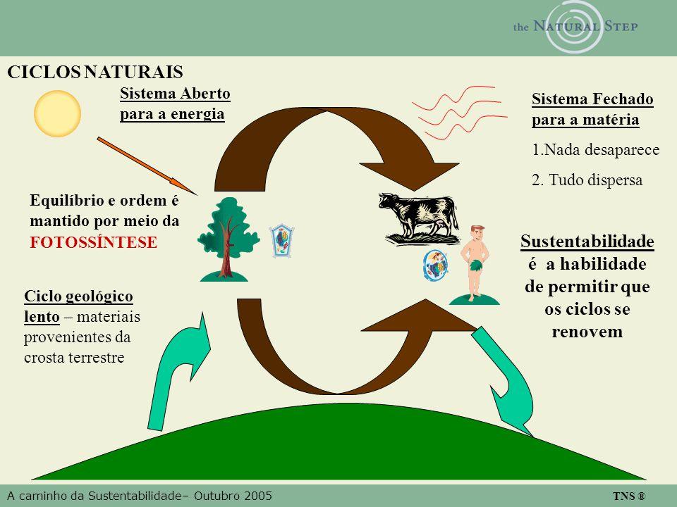A caminho da Sustentabilidade– Outubro 2005 TNS ® Equilíbrio e ordem é mantido por meio da FOTOSSÍNTESE Sistema Aberto para a energia Ciclo geológico