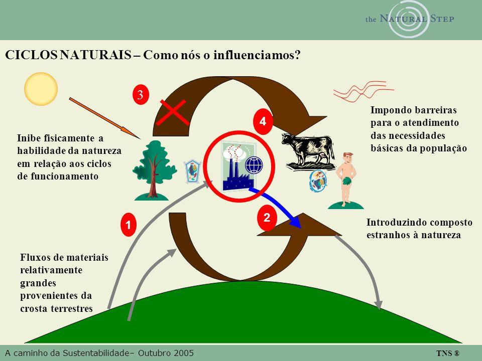 A caminho da Sustentabilidade– Outubro 2005 TNS ® CICLOS NATURAIS – Como nós o influenciamos? Inibe fisicamente a habilidade da natureza em relação ao