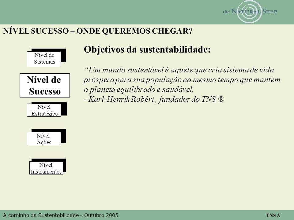 A caminho da Sustentabilidade– Outubro 2005 TNS ® NÍVEL SUCESSO – ONDE QUEREMOS CHEGAR? Nível Estratégico Nível Ações Nível Instrumentos Nível de Sist