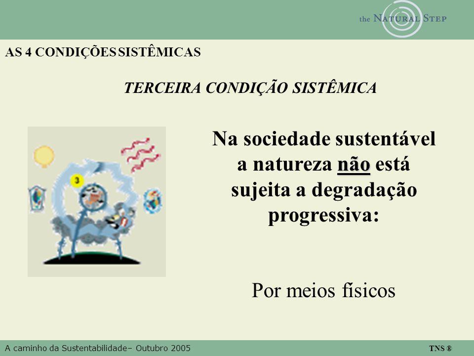 A caminho da Sustentabilidade– Outubro 2005 TNS ® AS 4 CONDIÇÕES SISTÊMICAS TERCEIRA CONDIÇÃO SISTÊMICA não Na sociedade sustentável a natureza não es