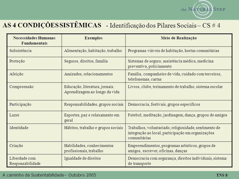 A caminho da Sustentabilidade– Outubro 2005 TNS ® AS 4 CONDIÇÕES SISTÊMICAS - Identificação dos Pilares Sociais – CS # 4 Necessidades Humanas Fundamen