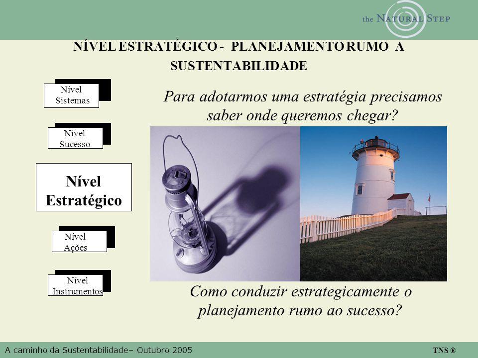 A caminho da Sustentabilidade– Outubro 2005 TNS ® NÍVEL ESTRATÉGICO - PLANEJAMENTO RUMO A SUSTENTABILIDADE Nível Ações Nível Instrumentos Nível Estratégico Nível Sucesso Nível Sistemas Para adotarmos uma estratégia precisamos saber onde queremos chegar.