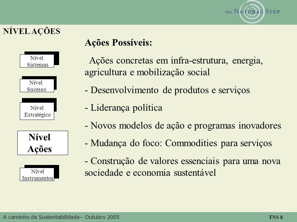 A caminho da Sustentabilidade– Outubro 2005 TNS ® NÍVEL AÇÕES Nível Estratégico Nível Instrumentos Nível Sistemas Nível Ações Nível Sucesso Ações Poss