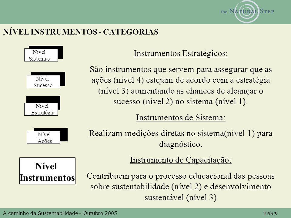 A caminho da Sustentabilidade– Outubro 2005 TNS ® NÍVEL INSTRUMENTOS - CATEGORIAS Nível Estratégia Nível Ações Nível Sistemas Nível Instrumentos Nível