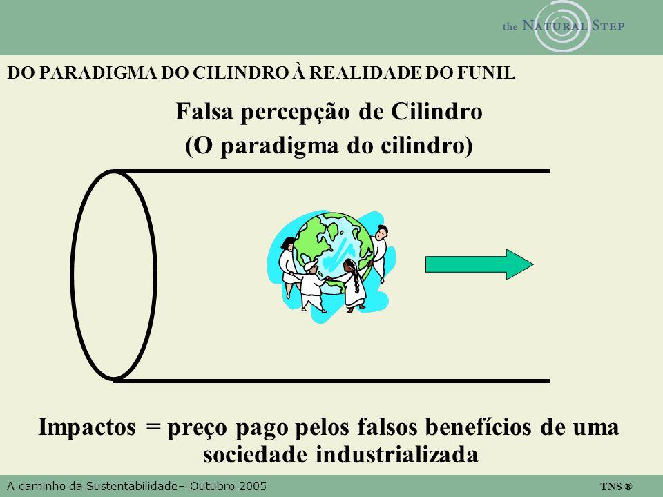 A caminho da Sustentabilidade– Outubro 2005 TNS ® DO PARADIGMA DO CILINDRO À REALIDADE DO FUNIL Falsa percepção de Cilindro (O paradigma do cilindro) Impactos = preço pago pelos falsos benefícios de uma sociedade industrializada