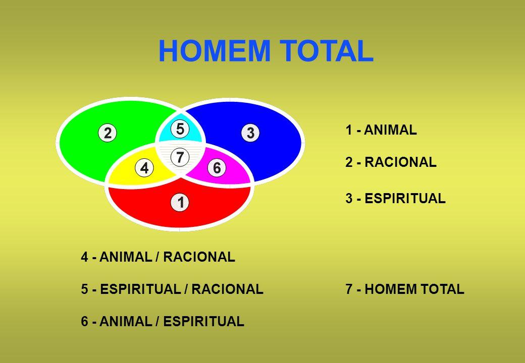 HOMEM TOTAL 1 - ANIMAL 2 - RACIONAL 3 - ESPIRITUAL 7 - HOMEM TOTAL 4 - ANIMAL / RACIONAL 5 - ESPIRITUAL / RACIONAL 6 - ANIMAL / ESPIRITUAL