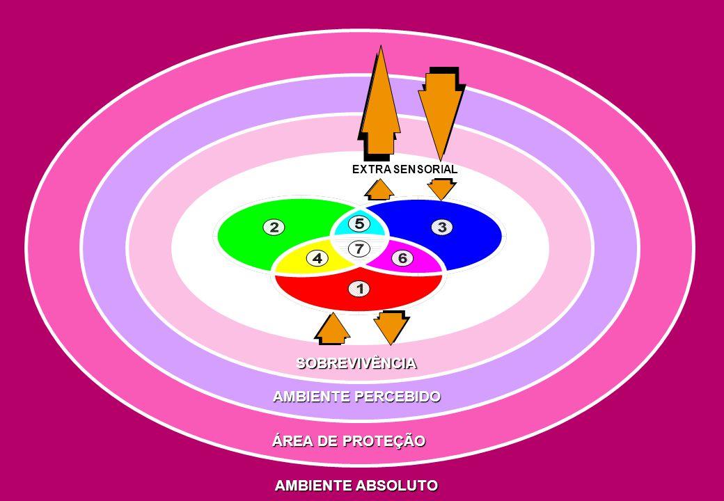 TRÍADE DO TRABALHO SIGNIFICATIVO SATISFAÇÃO SABERSAGRADO SATISFAÇÃO SABER SAGRADO NECESSIDADES BÁSICAS SOBREVIVÊNCIA REALIZAÇÃO RESULTADOS RECONHECIMENTO RECOMPENSA CONVÍVIO HARMÔNICO CONHECIMENTO BAGAGEM DOM VOCAÇÃO CRESCIMENTO INTERIOR MISSÃO SATISFAÇÃO SABER SAGRADO ANIMAL RACIONAL ESPIRITUAL PODER SABER QUERER
