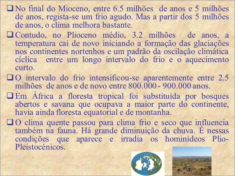  No final do Mioceno, entre 6.5 milhões de anos e 5 milhões de anos, regista-se um frio agudo.