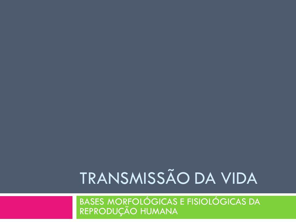 TRANSMISSÃO DA VIDA BASES MORFOLÓGICAS E FISIOLÓGICAS DA REPRODUÇÃO HUMANA