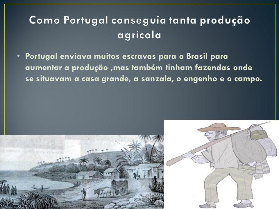 Portugal enviava muitos escravos para o Brasil para aumentar a produção,mas também tinham fazendas onde se situavam a casa grande, a sanzala, o engenh