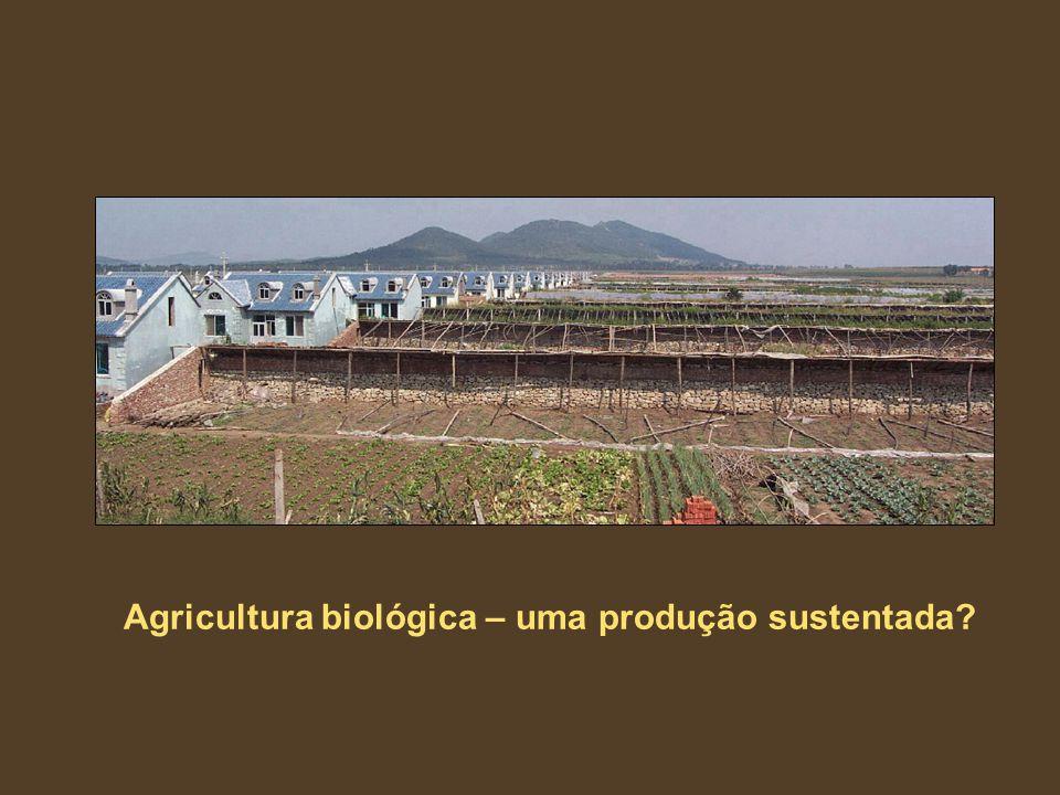 Agricultura biológica – uma produção sustentada?