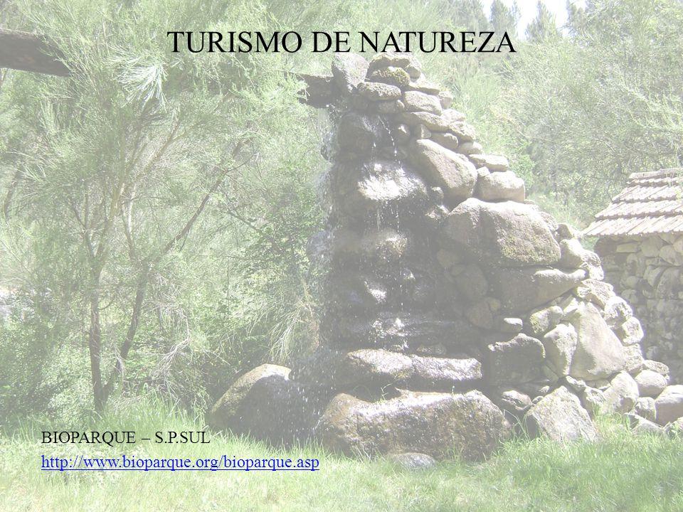 TURISMO DE SAÚDE E BEM-ESTAR TERMAS S.P.SUL http://www.termas-spsul.com/