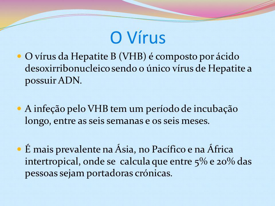O Vírus O vírus da Hepatite B (VHB) é composto por ácido desoxirribonucleico sendo o único vírus de Hepatite a possuir ADN. A infeção pelo VHB tem um